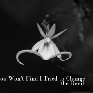 You Won't Find I Tried to Change the Devil