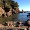 Rocksteady Lovers - From la Costa Brava with love