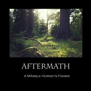 Aftermath - A Marble Hornets Fanmix