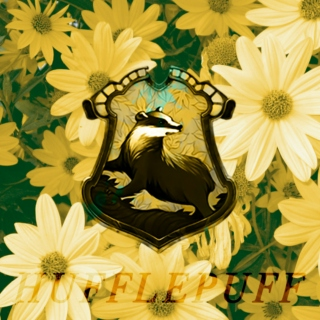 ☞ a hufflepuff is always tough ☜