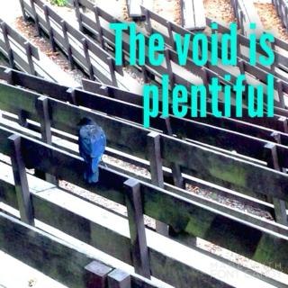 The Void is Plentiful