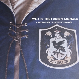 we are the fuckin animals ; ravenclaw quidditch mix
