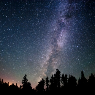 For my part I know nothing with any certainty, but the sight of the stars makes me dream