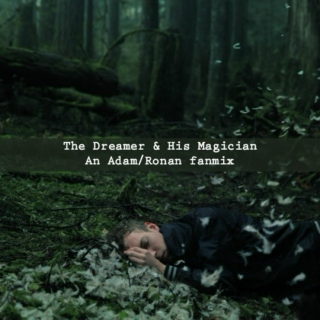 the dreamer and his magician