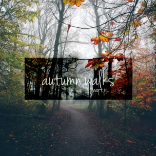 autumn walks (iii.)