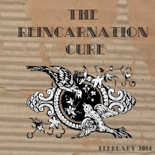 The Reincarnation Cure