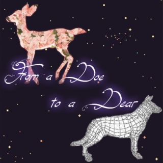 ☆°・*:.・From a Doe to a Dear・.:*・°☆
