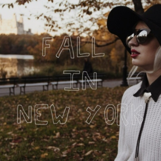 Fall in New York