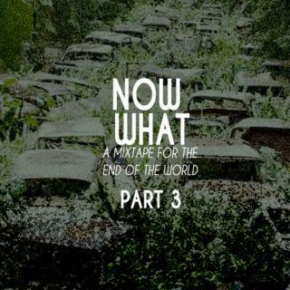 Now What Part 3: The Surviving