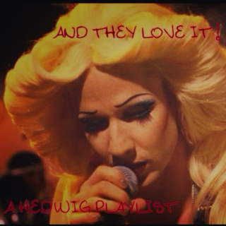 AND THEY LOVE IT! // a hedwig playlist