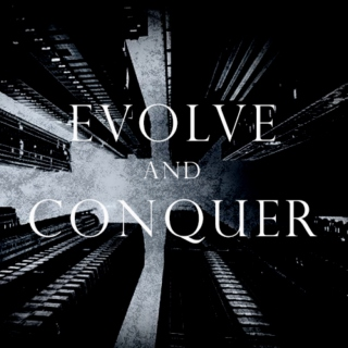 EVOLVE AND CONQUER
