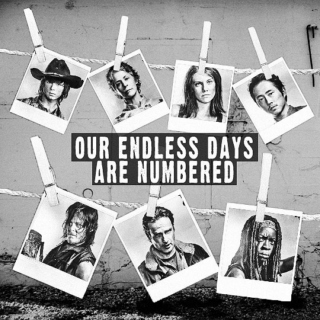 Our Endless Days Are Numbered