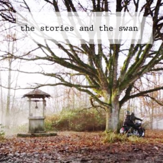 The Stories and The Swan