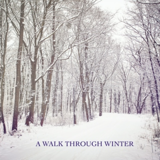 A Walk through Winter