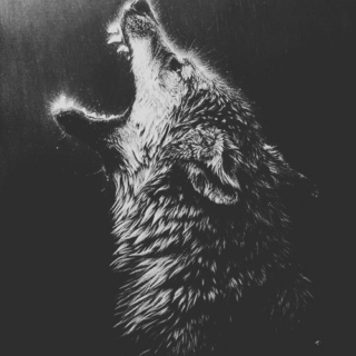 Wolves ☽○☾