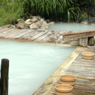The Japanese Hot Spring