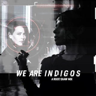 We Are Indigos