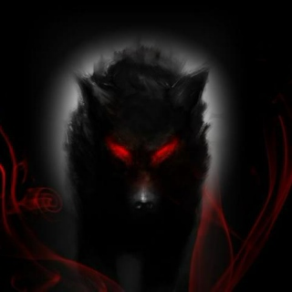 The Wolf Red-Eye