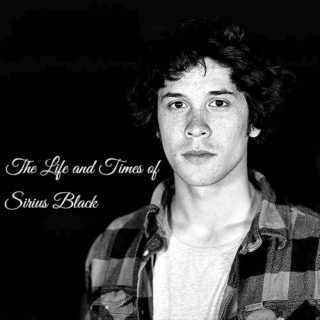 The Life and Times of Sirius Black