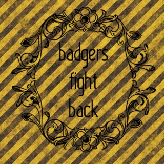 badgers fight back
