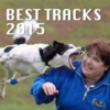 Best Tracks of 2015