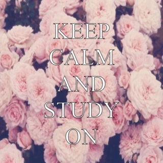 Keep Calm and Study On II