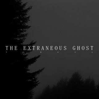 THE EXTRANEOUS GHOST