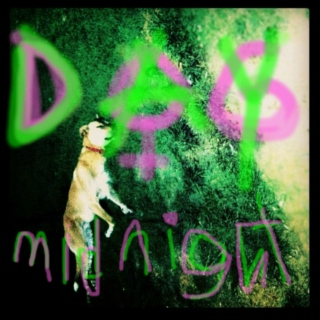 Dog Day Midnight
