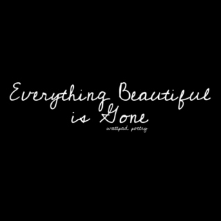 everything beautiful is gone | wattpad