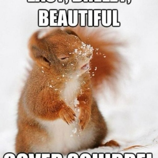 For my sexy squirrel