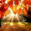 Seasons & Celebrations Radio  SEPTEMBER  Autumn and Work Songs
