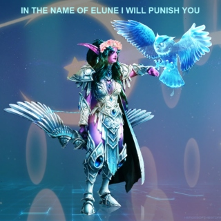 IN THE NAME OF ELUNE I WILL PUNISH YOU