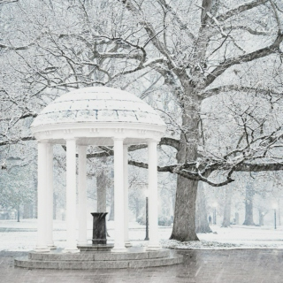 The Old Well