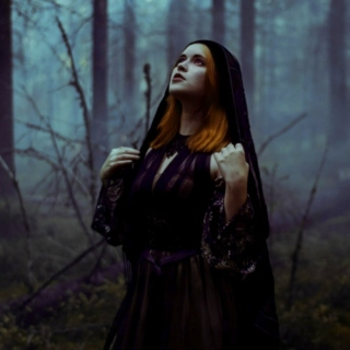 Forest Witches