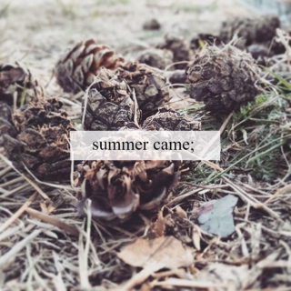 summer came;