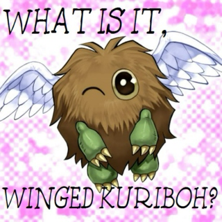 What Is It, Winged Kuriboh?