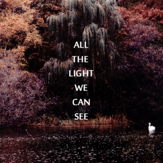 All the light we can see