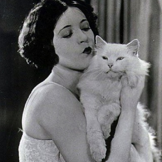 Pussy Cat Rag (Old-Time Innuendo from the Hit Machine)