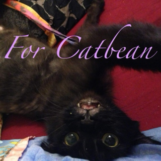 For Catbean