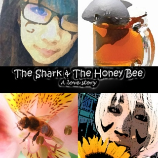 The Shark & The Honey Bee