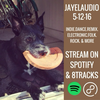 JayeL Audio 5-12-16