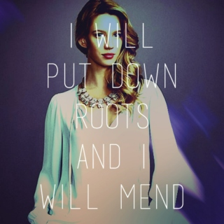 i will put down roots & i will mend