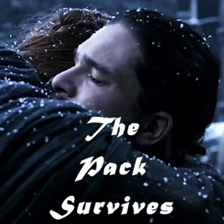 The Pack Survives