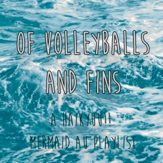 of volleyballs and fins