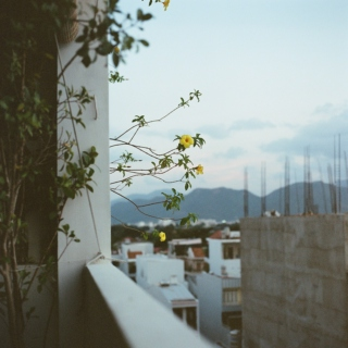 'Dreamers... They Never Learn'