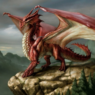 Perspicacious Dragon of Welkin