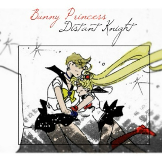Bunny Princess, Distant Knight