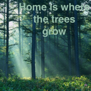 Home is where the trees grow