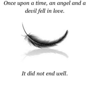A Broken Wishbone and a Fallen Feather