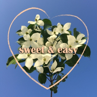sweet and easy
